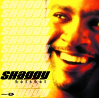 It Wasn't Me - Shaggy