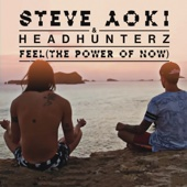 Steve Aoki & Headhunterz - Feel (The Power of Now) artwork