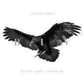 Vultures Above, Lions Below cover art