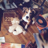 Feeling Playful? (Canine Companion Edition)