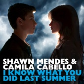 shawn mendes camila cabello-i know what you did last summer