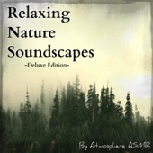 Relaxing Nature Sounds (Deluxe Edition) [Rain, Thunder, Crickets, Waves, Waterfalls, River and Spa Soundscapes]