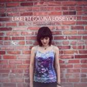 Like I'm Gonna Lose You - Sara Niemietz
