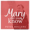 Mary, Did You Know? - Single, Peter Hollens