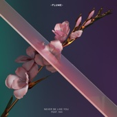 Flume - Never Be Like You (feat. Kai) artwork