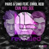 Can You See (feat. Errol Reid)