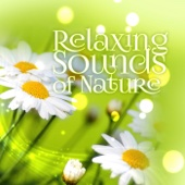 Green Music (Nature Sounds)
