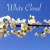 White Cloud (feat. 蒼姫ラピス) - Single