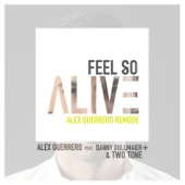 Feel so Alive (feat. Danny Dullmaier & Two Tone) [Remode]