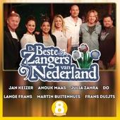 De Beste Zangers van Nederland Seizoen 8