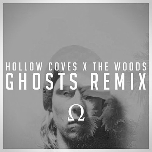 The Woods (Ghosts Remix) - Hollow Coves
