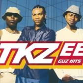 Tkzee Family - Fiasco artwork