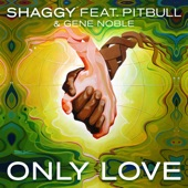 Only Love (feat. Pitbull & Gene Noble) - Single