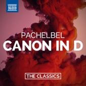 Canon & Gigue in D Major, P. 37: Canon - Capella Istropolitana & Richard Edlinger