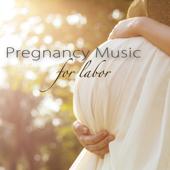 """Bagatelle No. 25 in a Minor """"Für Elise"""" (Classics, Piano Music)"""