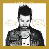Digital Vein (Deluxe Version) cover art