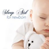 Sleep Aid for Newborn: Bedtime Baby Music, Soothing Moods for Children and Relaxing Pregnancy