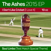 Ashes 2015 Ep/I Don't Like Cricket (I Love It)