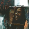 Dreams of Freedom: Ambient Translations of Bob Marley In Dub