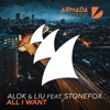 All I Want (feat. Stonefox) [Extended Mix]