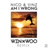Am I Wrong - Single