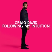 Craig David - Following My Intuition artwork