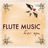 Flute Music for Spa and Healing Massage - Bansuri and Shakuhachi Asian Meditation Songs