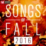 Songs of Fall 2016 (60 Min Non-Stop Workout Mix 135-140 BPM)
