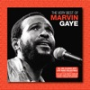 The Very Best of Marvin Gaye (Live), Marvin Gaye