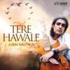Tere Hawale Single