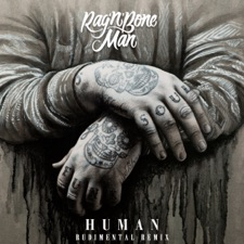 Human (Rudimental Remix) artwork