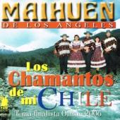Los Chamantos de Mi Chile