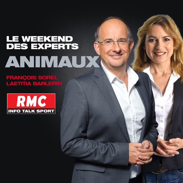 Le weekend des experts : Vos animaux