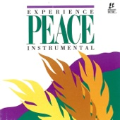 Experience Peace (Instrumental) - Integrity Worship Musicians