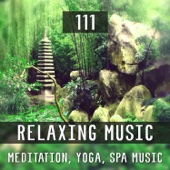 111 Relaxing Music: Meditation, Yoga, Spa Music, White Noise Waves Sounds, Calming Healing Music