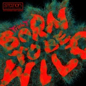 [Download] Born to be Wild (feat. 박진영) MP3
