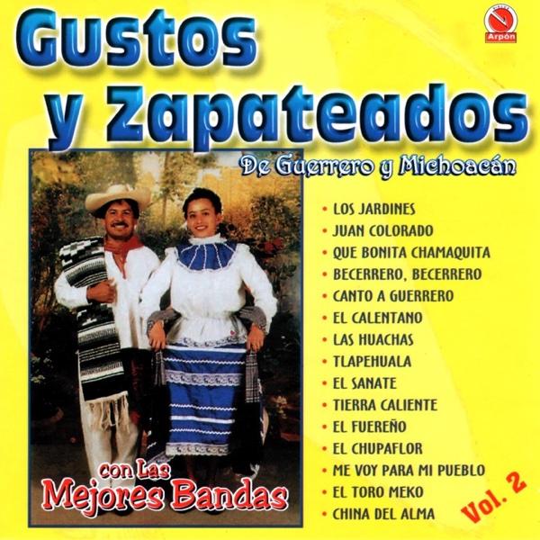 Gustos y Zapateados, Vol. 2 (De Guerrero y Michoacán) [Con las Mejores Bandas] | Various Artists