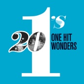 Various Artists - 20 #1's: One Hit Wonder  artwork