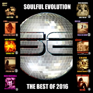 Soulful Evolution the Best Of 2016 - Various Artists