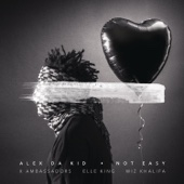 Alex Da Kid - Not Easy (feat. X Ambassadors, Elle King & Wiz Khalifa) artwork