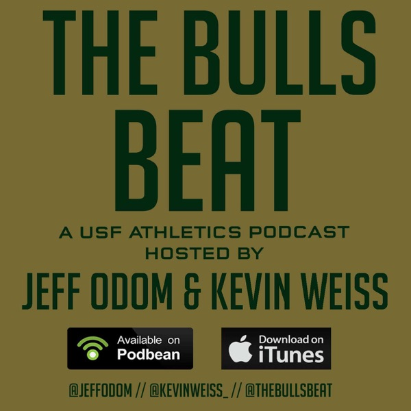 The Bulls Beat Podcast