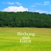 Birds Song and Forest, Vol.2 - EP