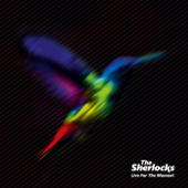 Live for the Moment - The Sherlocks