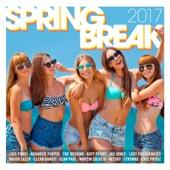 Various Artists - Spring Break 2017 artwork