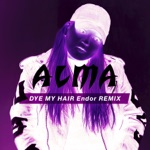 Dye My Hair (Endor Remix) - Single
