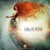 Liquid Soul - Lost Gravity (Silent Sphere Remix) artwork
