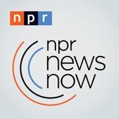 NPR News Now - NPR