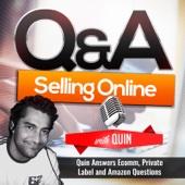 Q&A Selling Online - Private Label and Ecommerce Entrepreneur Quin Amorim