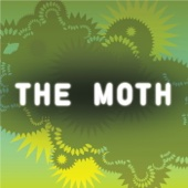 The Moth - The Moth