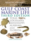 Beachcombers Guide To Gulf Coast Marine Life - Third Edition
